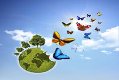 Ökosystem unserer Umwelt