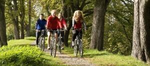 Gruppe von vier Fahrradfahrern faehrt auf der Kastanienalle von Haus Kemnade am Ruhrtalradweg.